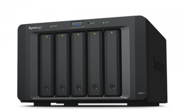 Synology DX517 5-Bay 16TB Bundle mit 2x 8TB Gold WD8004FRYZ